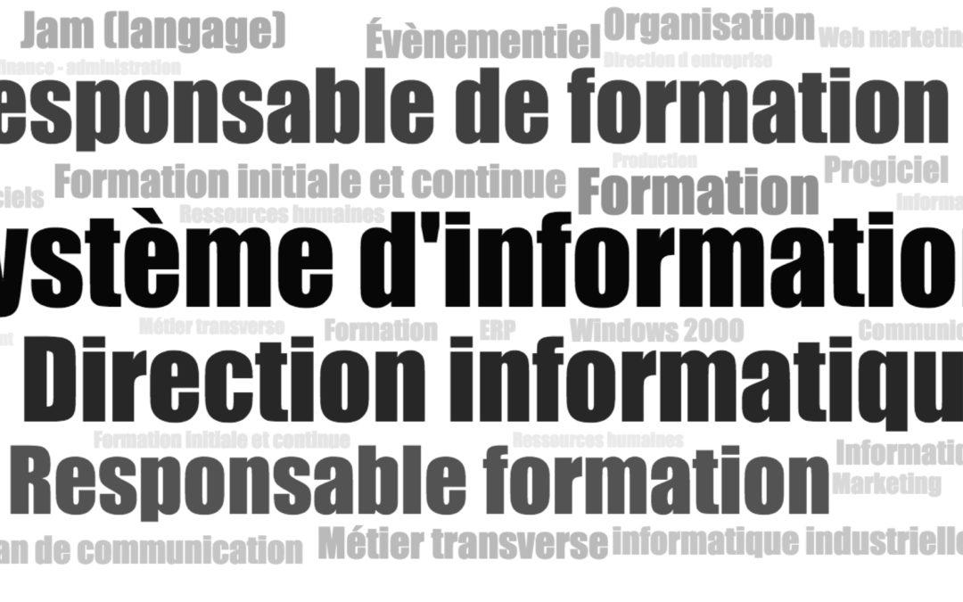 Projets, organisation, réflexions liées aux systèmes d'information, faites vous accompagner